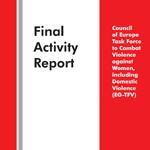 Final Activity Report
