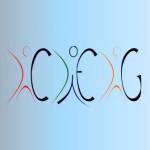 Celebrar a Investigação em Estudos de Género: Conferência no 2.º Aniversário do CIEG  (21 de maio, no ISCSP, em Lisboa)