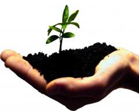 Simpósio Internacional: Apoio ao Empreendedorismo na Europa: Criação de Emprego Sustentável e Desenvolvimento