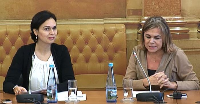 Teresa Fragoso em audição parlamentar